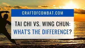 Tai Chi vs. Wing Chun: What's the difference? - CraftofCombat.com