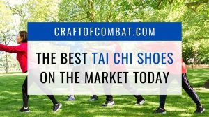 The best tai chi shoes on the market today - CraftofCombat.com