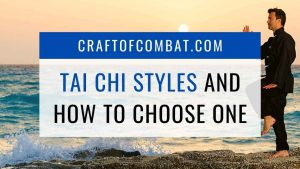 Tai Chi Styles and how to choose one - CraftofCombat.com