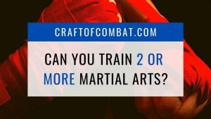 Can you train 2 or more martial arts together? - CraftofCombat.com