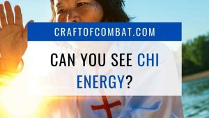 Can you see chi energy? - CraftofCombat.com